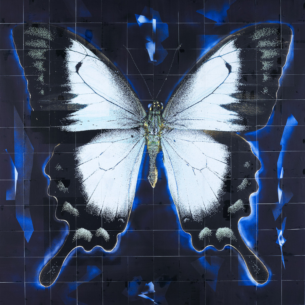 "An image from the ""Flutterby: Butterfly"" exhibit at the Louisiana Art & Science Museum"