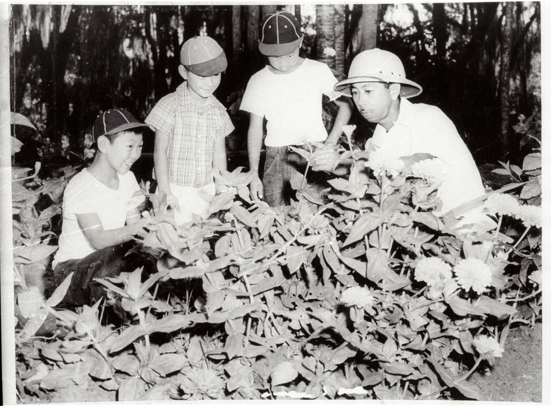 Imahara Landscaping Baton Rouge